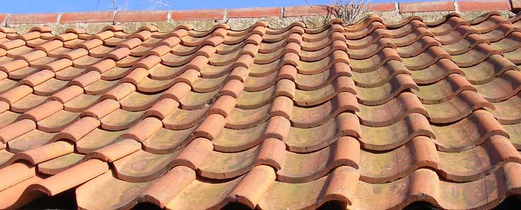 roof waranty